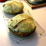 Crusty Whole Wheat Rocket Breads