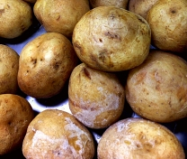 salt potatoes cropped copy