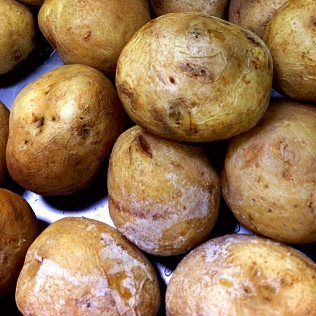 Salt Potatoes